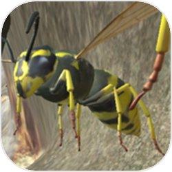 黄蜂巢模拟器3D体验解密